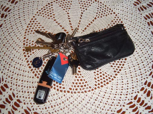 my-purse.jpg