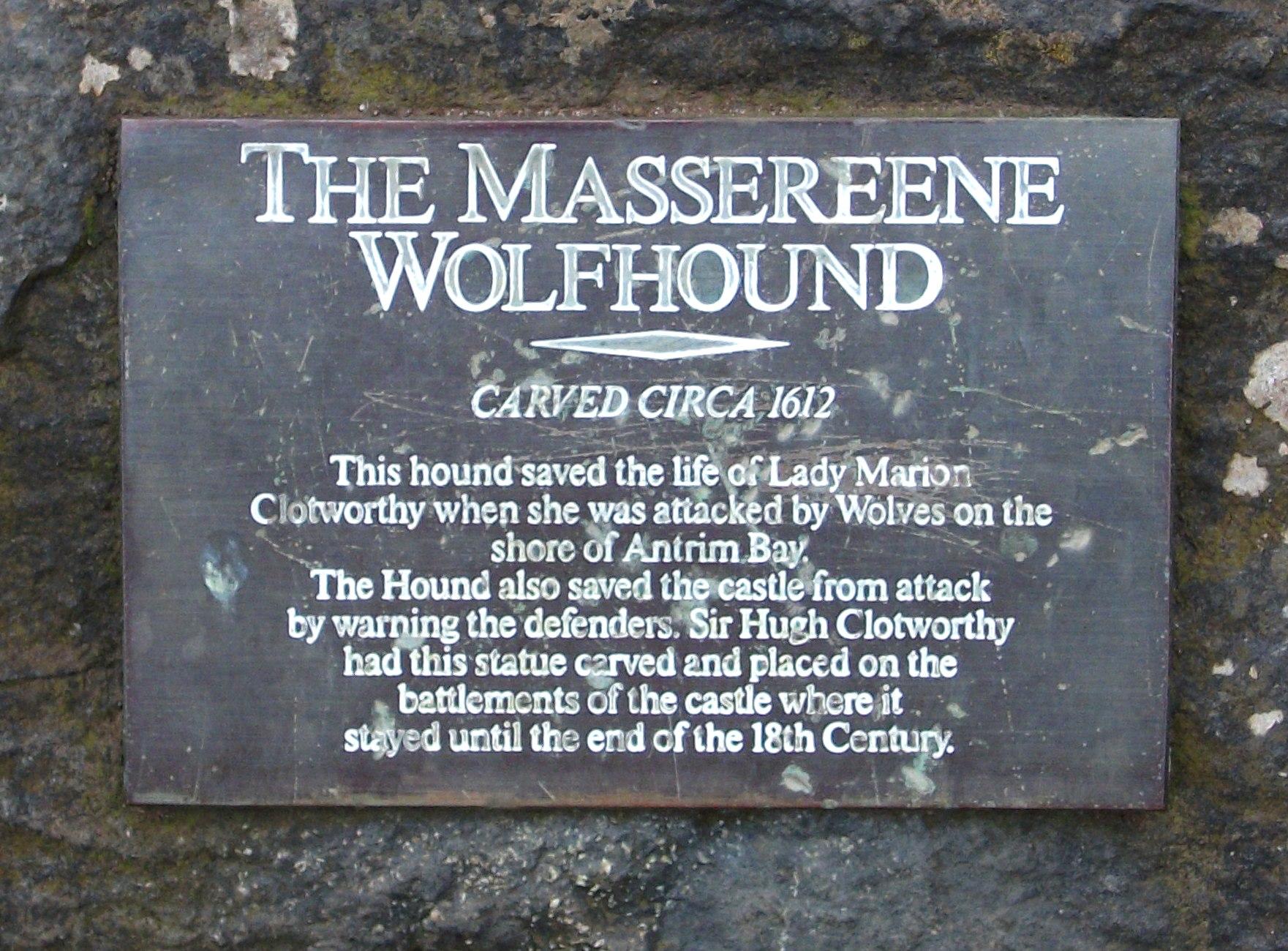 irish wolfhound wolf mix displaying 20 images for irish wolfhound wolf