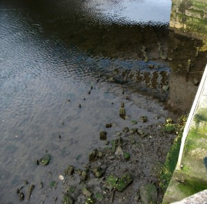 Wooden foundations at Rory O'More Bridge